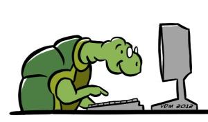 turtlecomp